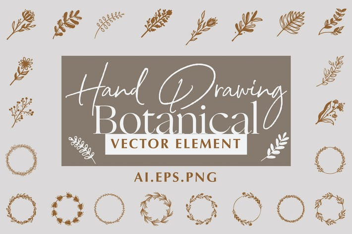 Thumbnail for Hand Drawing Botanical Vector