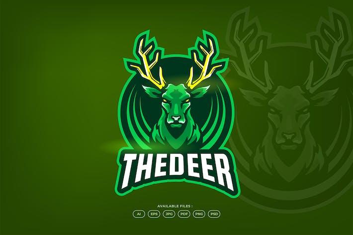 Thumbnail for Wild Deer Forest