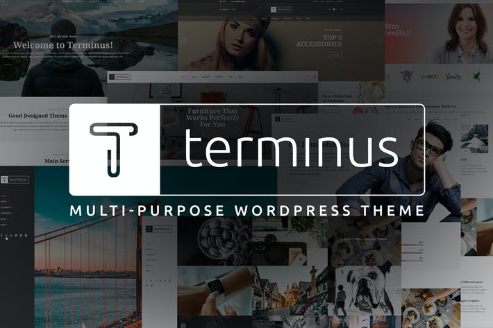 Thumbnail for Terminus - Multi-Purpose WordPress Theme