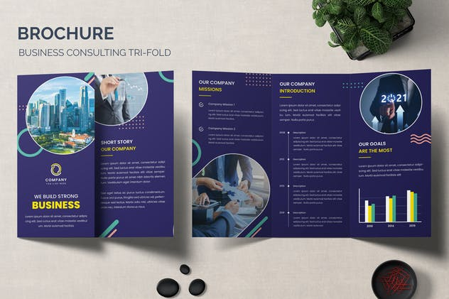 Trifold Brochure Business