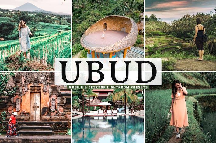 Thumbnail for Убуд предустановки для мобильных и настольных устройств Lightroom