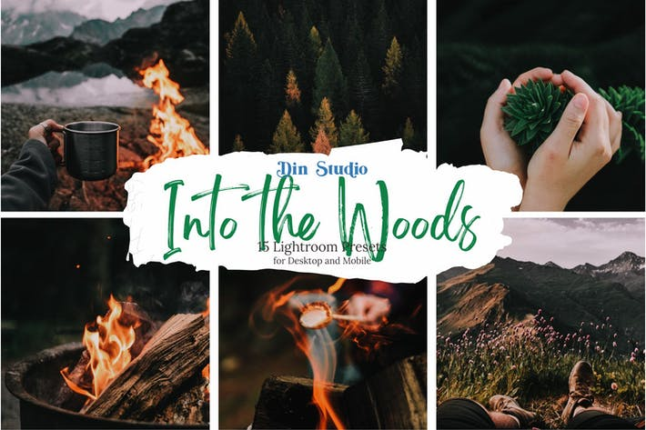Thumbnail for Into the Woods Lightroom Presets