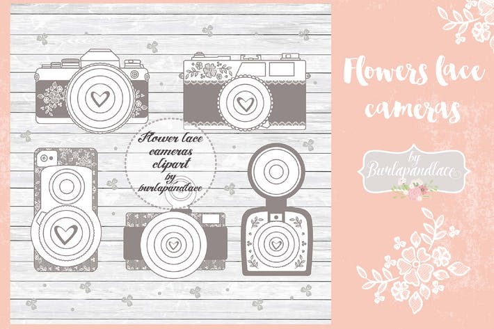 Thumbnail for Flower Cameras clip art Vector