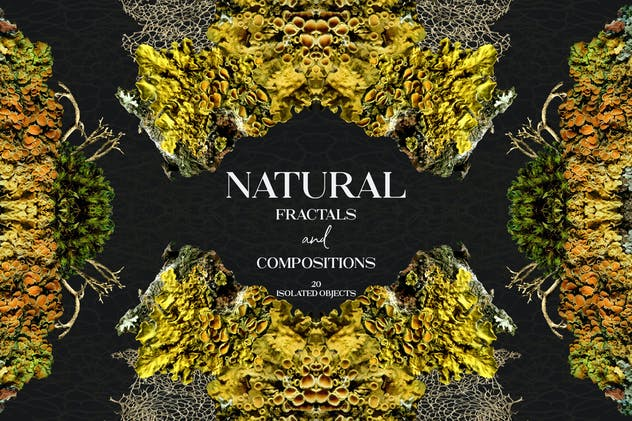 Natural Fractals and Compositions - product preview 0