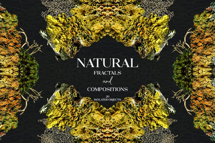 Natural Fractals and Compositions