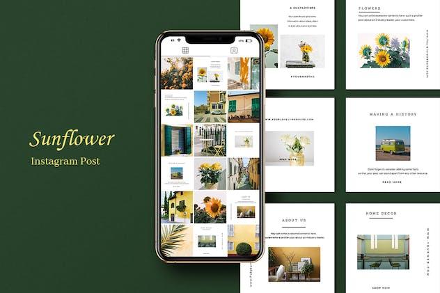 Sunflower Instagram Post