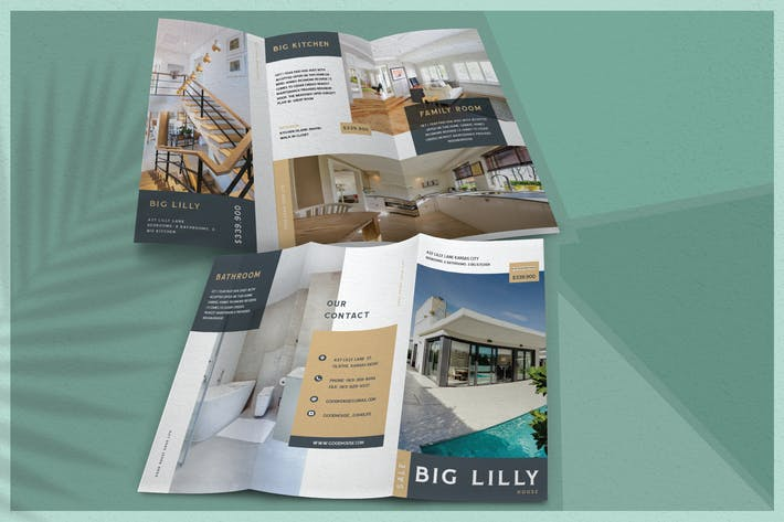 Thumbnail for Elegant Property - Brochure