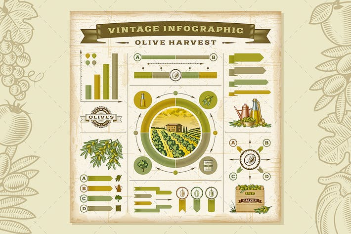 Thumbnail for Vintage Olive Harvest Infographic Set