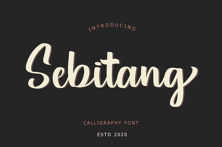 Шрифт каллиграфии Sebitang