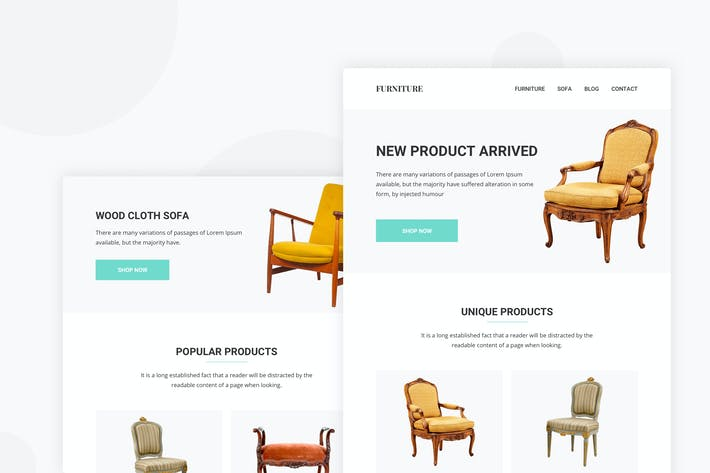 Thumbnail for Furniture Sale - Email Newsletter
