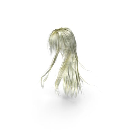 Long Blonde Anime Female Hairstyle