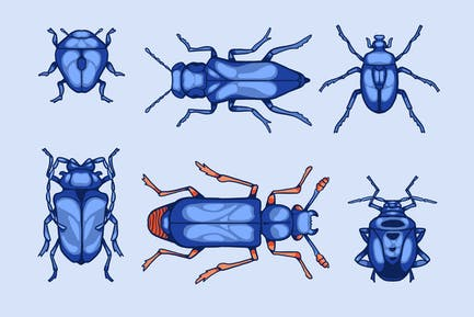 The Beetles Clipart