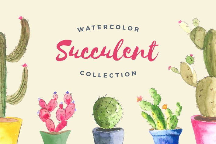 Thumbnail for Watercolor Succulent Collection