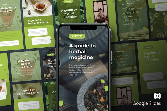 Thumbnail for Фито - Травяная медицина Instagram Google слайды