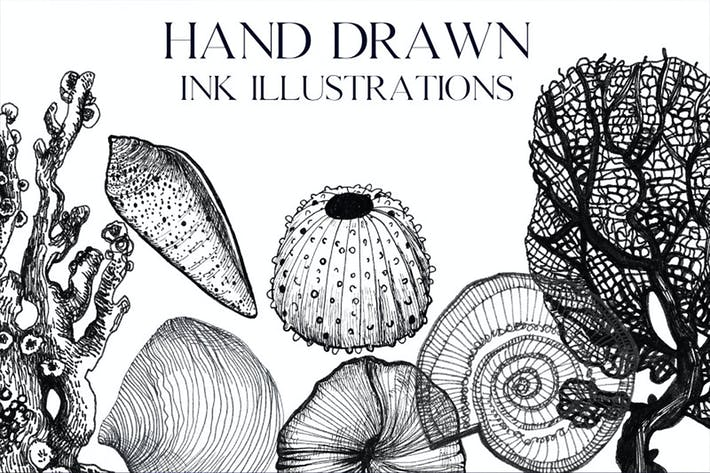 Thumbnail for Ink hand-drawn ocean illustrations