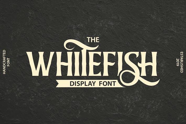 Thumbnail for Whitefish | Display Font