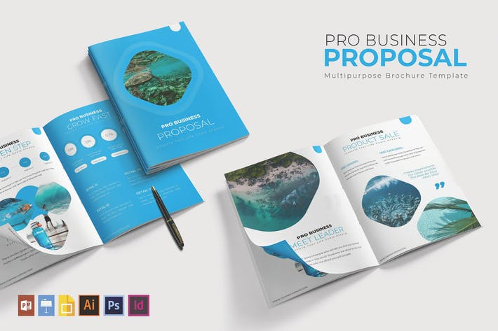 Thumbnail for Pro Business | Proposal