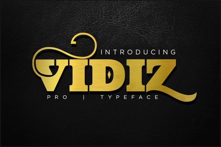 Cover Image For VIDIZ PRO Typeface