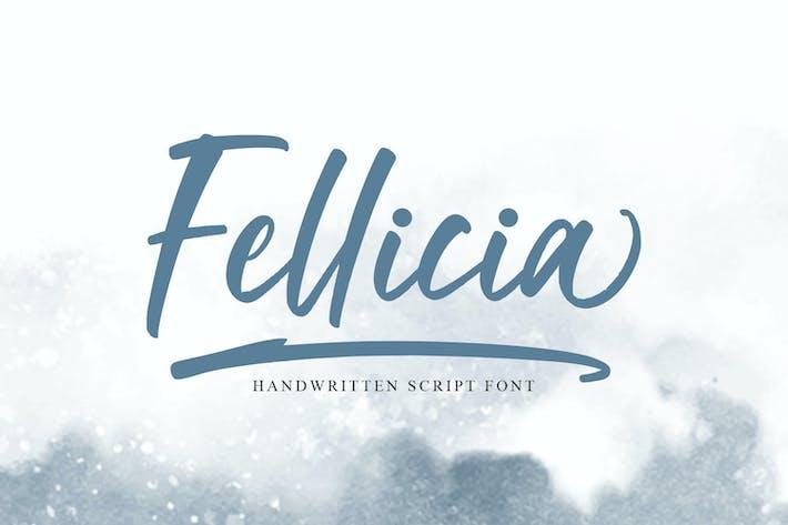 Thumbnail for Fellicia - Brush Font