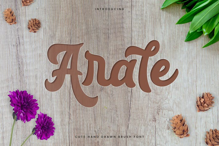 Cover Image For Arale - Bold Beauty Script Font