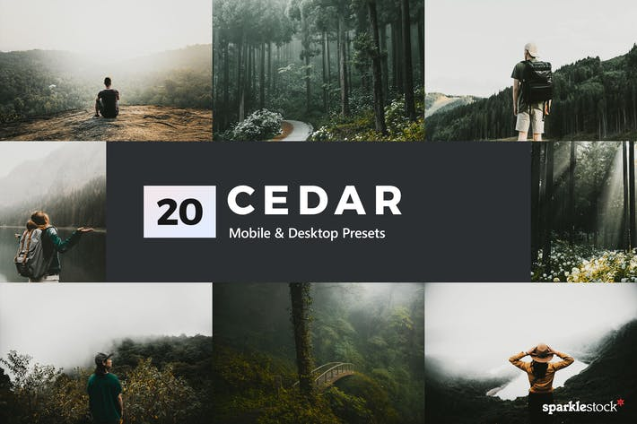 Thumbnail for 20 Cedar Lightroom Presets and LUTs