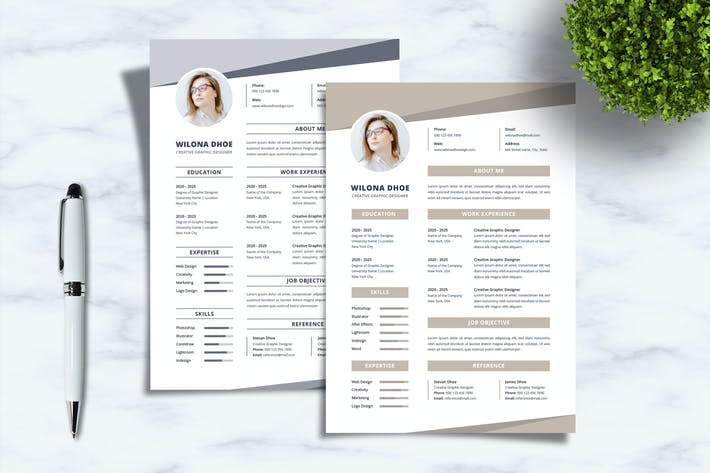 Professional Resume - Sanstemp