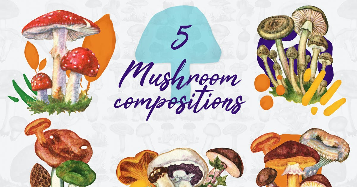 Download 5 Mushroom Compositions by FreezeronMedia