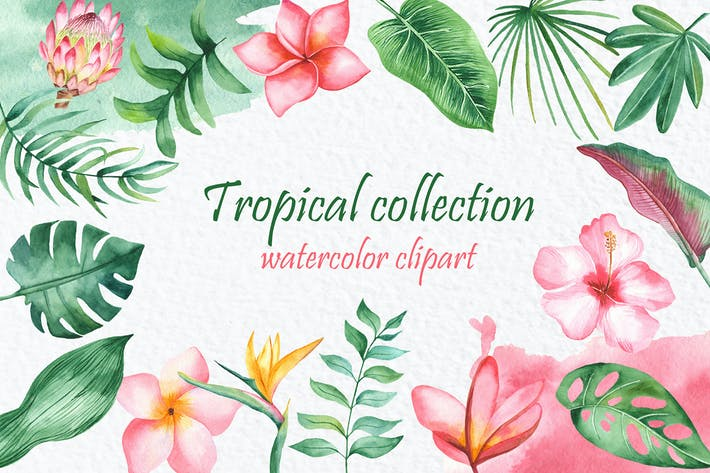 Thumbnail for Watercolor tropical collection