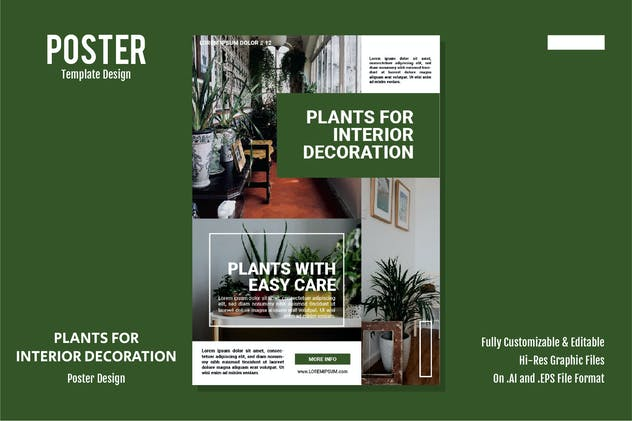 Plants for Interior Decoration