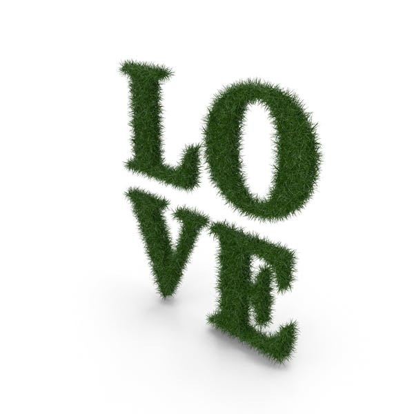 Слово Трава Любовь