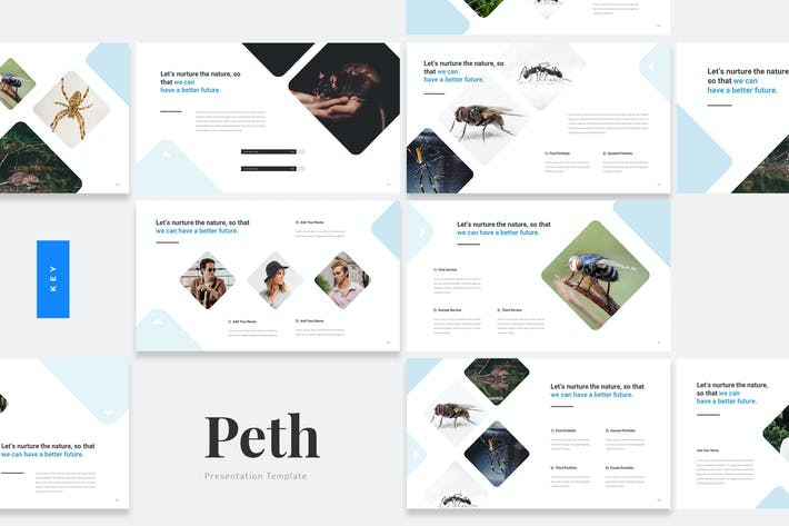 Thumbnail for Peth - Pest Control Keynote Template