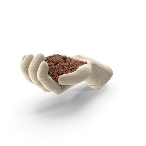 Glove Handful with Flax Seeds