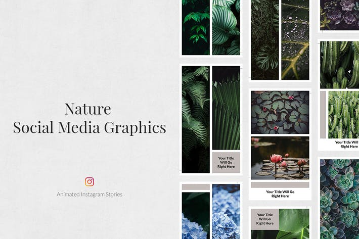 Thumbnail for Nature Animated Instagram Stories