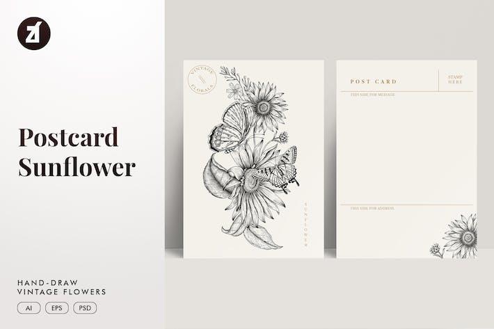 Thumbnail for Vintage postcard hand-drawn floral illustration