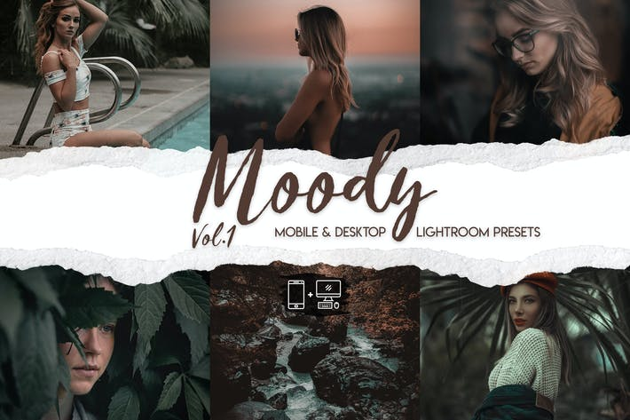 Thumbnail for Moody Vol. 1 - 15 Premium Lightroom Presets