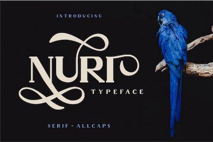 Nuri - Fuente de pantalla elegante clásica