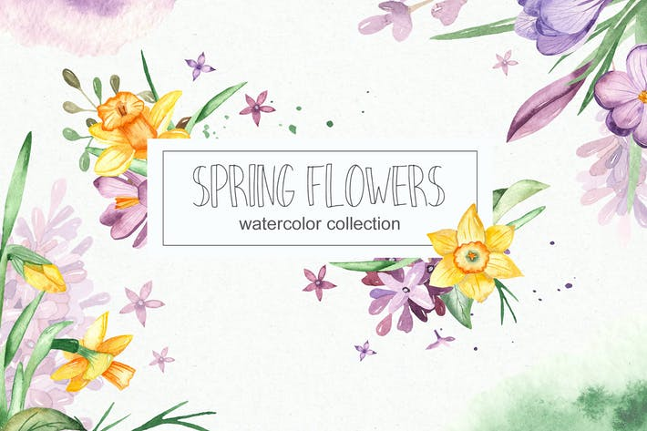 Thumbnail for Watercolor spring flowers collection