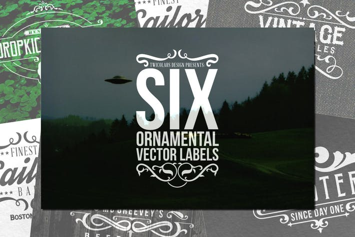Cover Image For 6 Ornamental Vector Labels