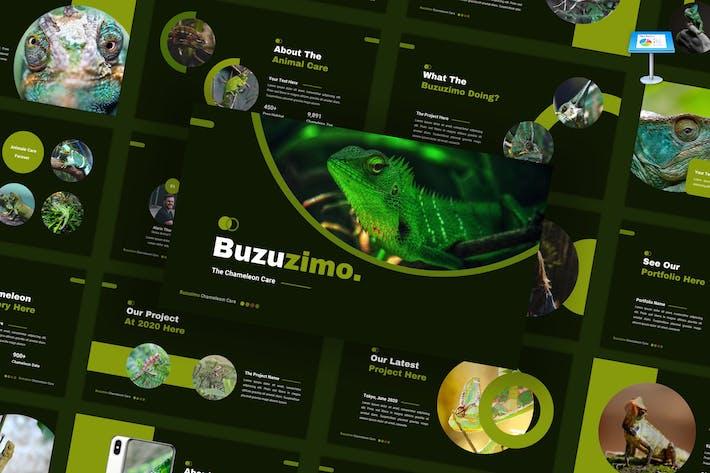 Buzunismo - Шаблон Keynote для ухода за животными