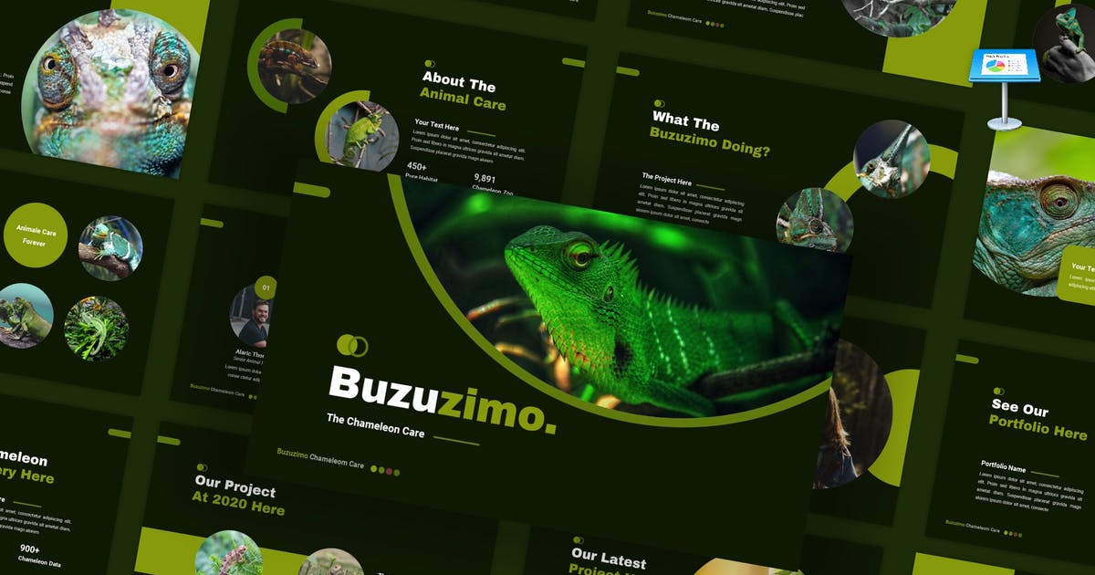 Download Buzunismo - Animal Care Keynote Template by CocoTemplates