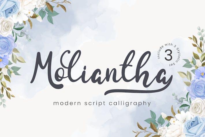 Moliantha - Шрифт каллиграфии