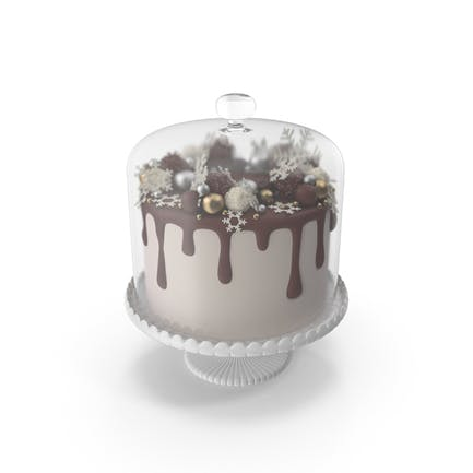 Snowflake Drip Cake with Glass Dome