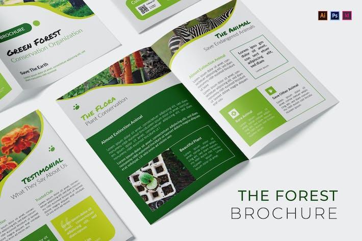 Forest Conservation Brochure