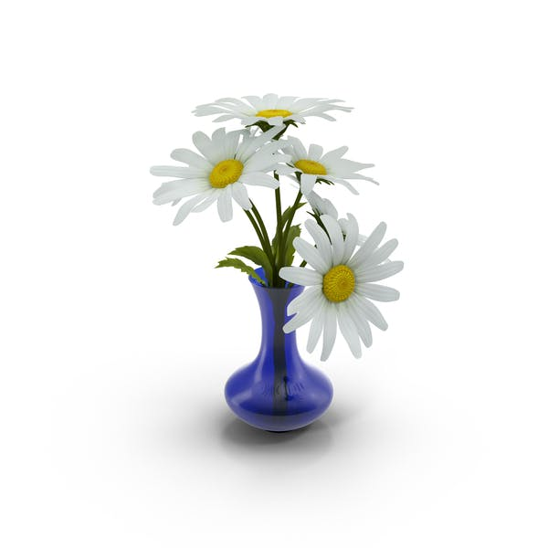 Thumbnail for Vase Full of Daisies