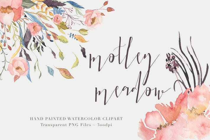 Thumbnail for Motley Meadow - Watercolor Floral Clipart Set