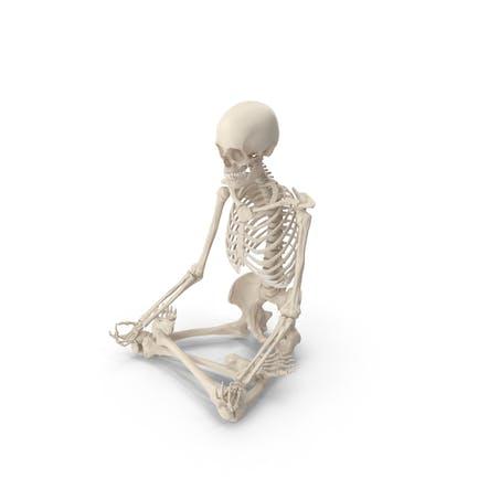 Skeleton Lotus Pose
