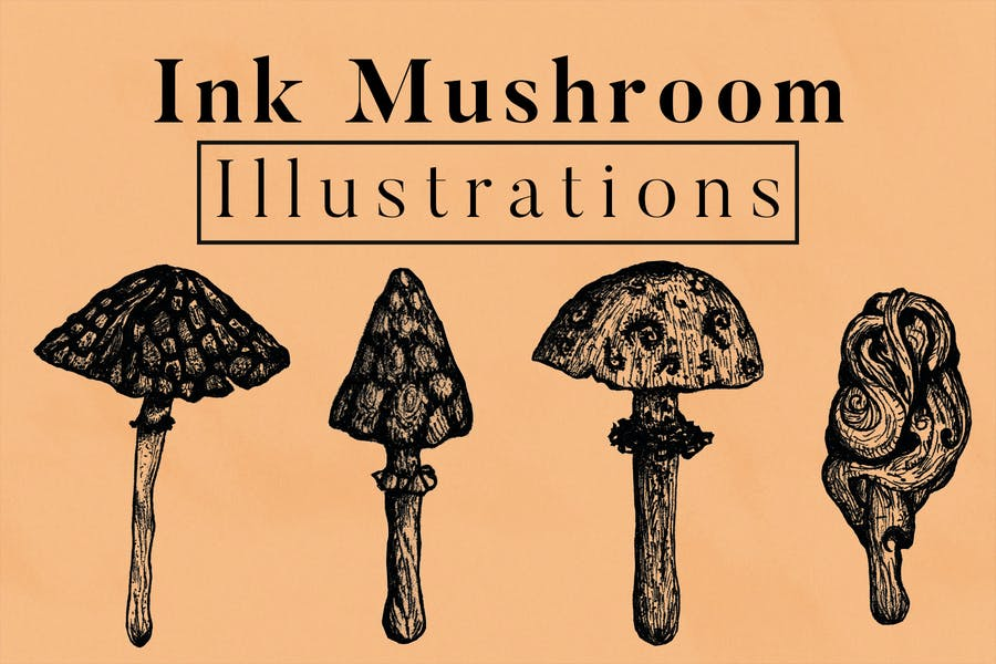 Ink Mushroom Illustrations
