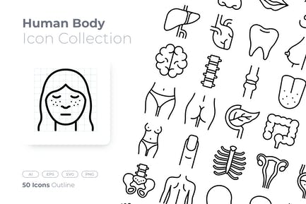 Human Body Outline Icon
