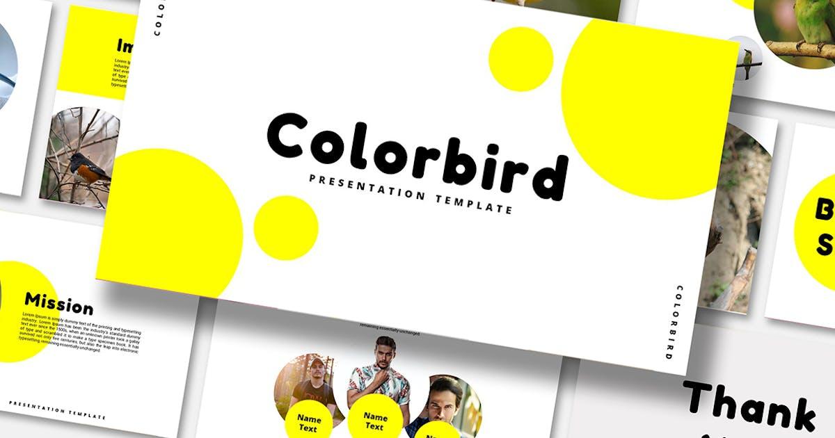 Download Color Bird - PowerPoint Template by alonkelakon