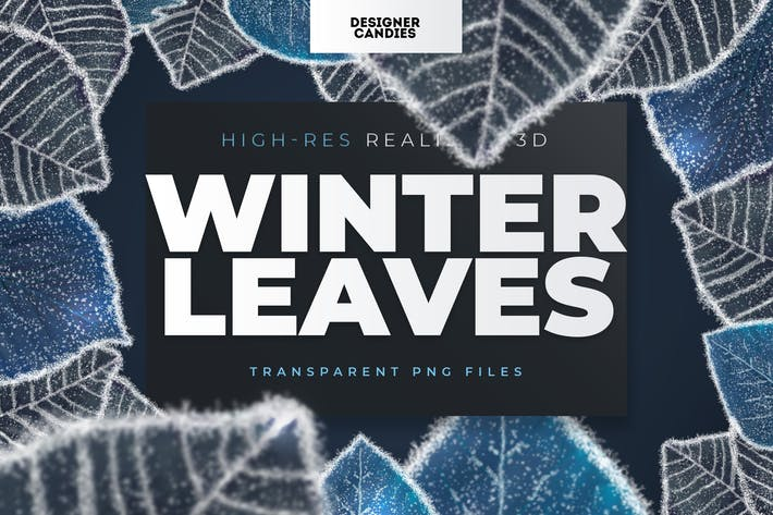 Winter Leaves / Leaf Overlays